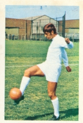 Rod Belfitt