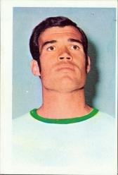 Gustavo Pena