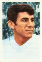 Nicolae Lupescu
