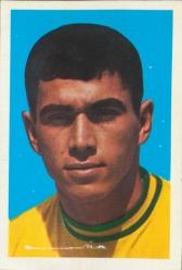 Clodoaldo Brazil