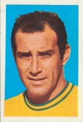 Gerson Brazil