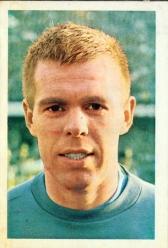 Ronney Pettersson