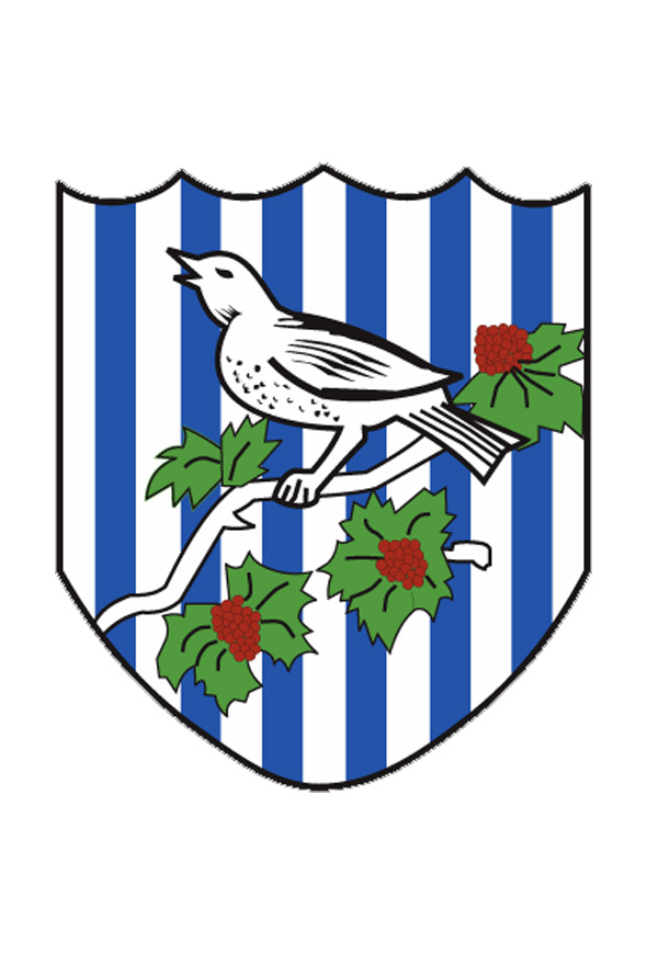west bronwich albion